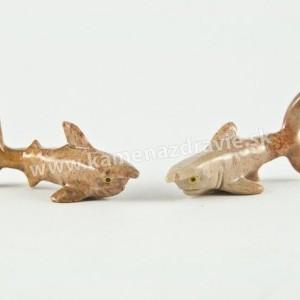 Mramor žralok
