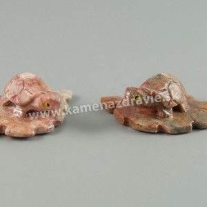 Mramor korytnačka na liste